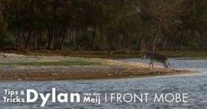 Dylan van der Meij frontmobe