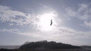 olly-bridge-kiteboarding-north-freestyle-australia